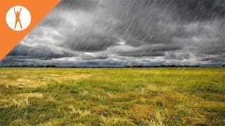 Rain Music and Thunder: Relaxing Music, Nature Sounds, Stress Relief Music.